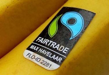 foto-plus-banaan